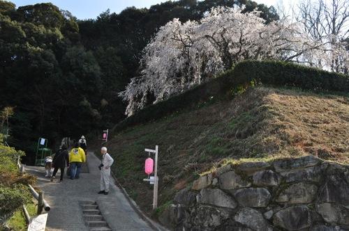 Okuyamada DSC 4057