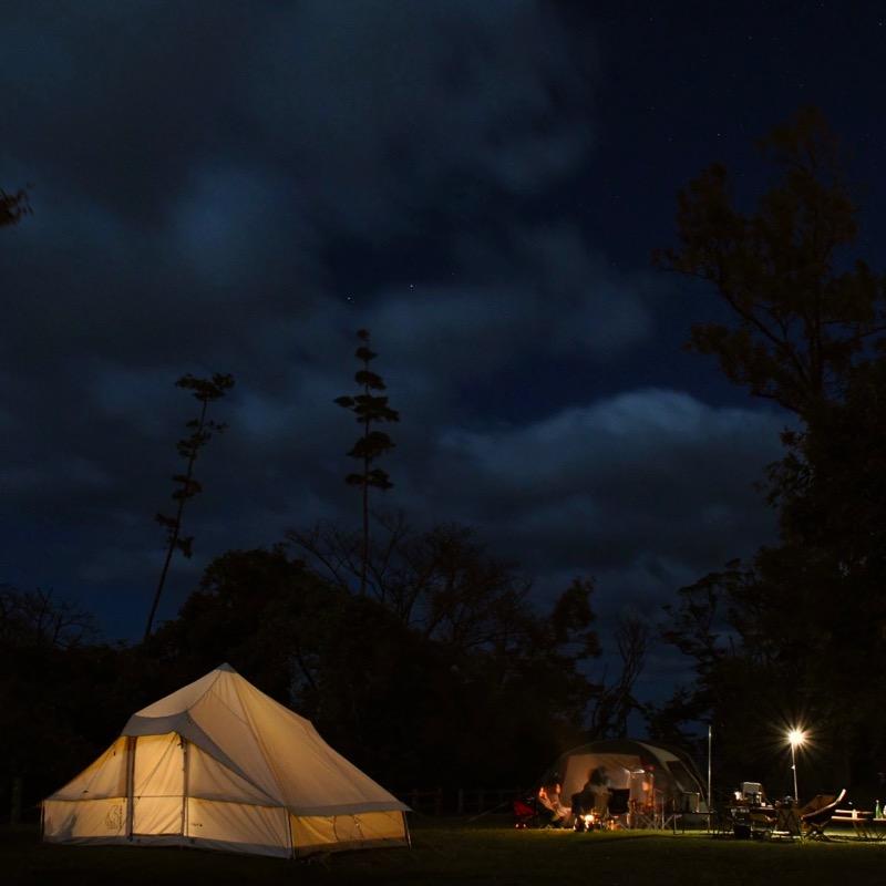 たねほおずき 大型テント