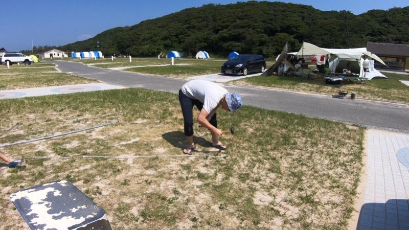 石見海浜公園キャンプ場 ペグ